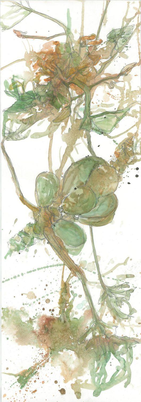 La Gomera Kürbisbluete, 2014 Aquarell 100x35 cm