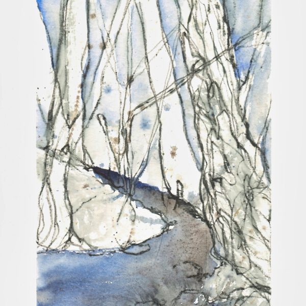 Bäume (1) - Blauer Bach