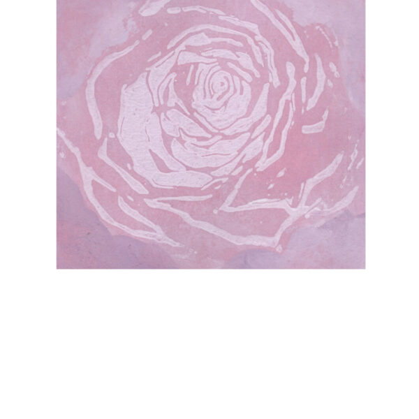 rosen rose rosa 1 gesa_voegele